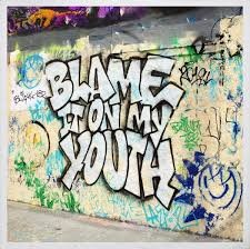 Blink 182 – Blame It On My Youth